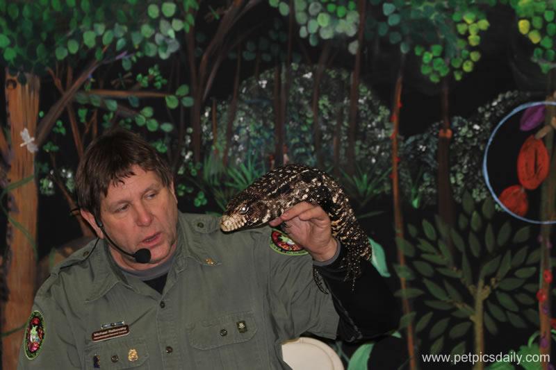 Michael_Ralbovsky_rainforest
